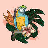 A composition featuring a collection of parrots, tropical plants and flowers.