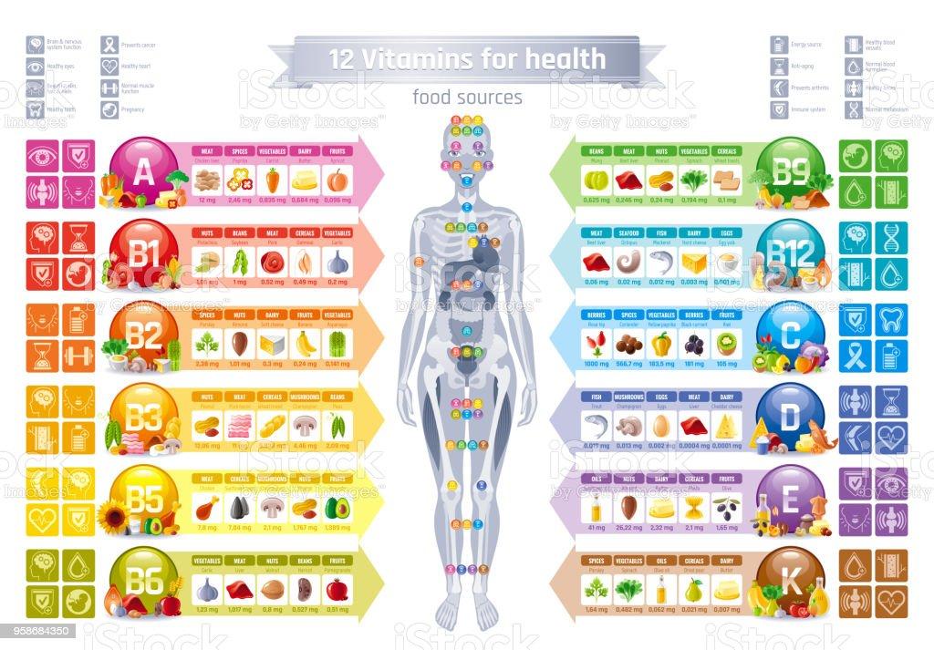 Vitamínico mineral, cuerpo humano mujer, comida, bandera de beneficios de salud, plano vector icono set texto carta insignia. Cartel de ilustración tabla, tabla de medicina. Diagrama de infografía médico dieta balanza - ilustración de arte vectorial