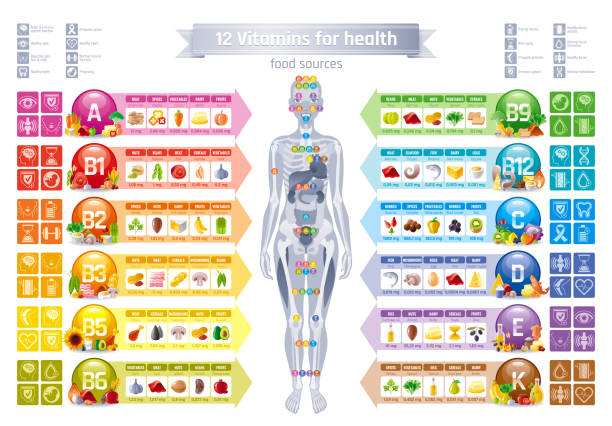 mineral vitamin supplement, human female body, food, health benefit banner, flat vector icon set text letter logo. table illustration poster, medicine chart. diet balance medical infographic diagram - vitamin d stock illustrations