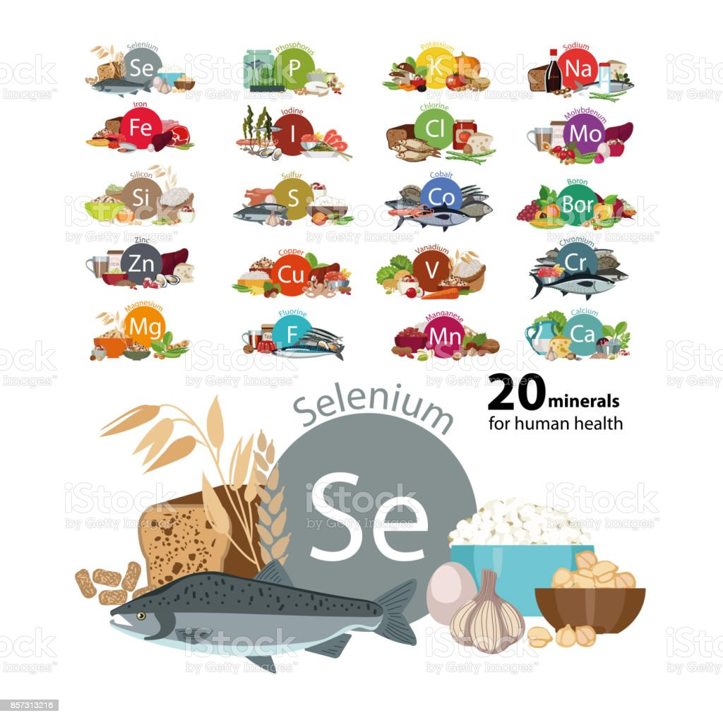 20 minerals vector art illustration