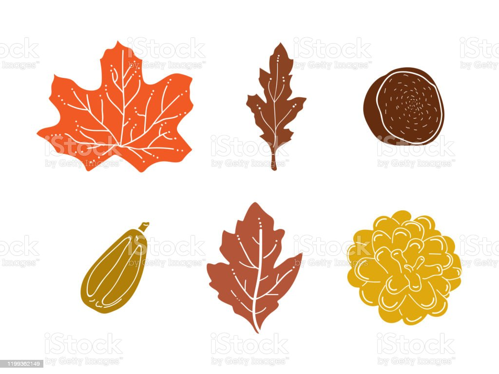 Minimal Cute Fall Leaves Set Vector On White Background Stock Illustration Download Image Now Istock