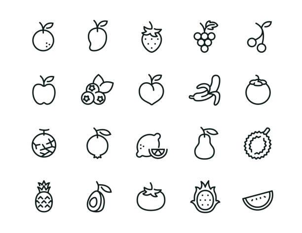 ilustraciones, imágenes clip art, dibujos animados e iconos de stock de conjunto de iconos de fruta mínima - trazo editable - fruta