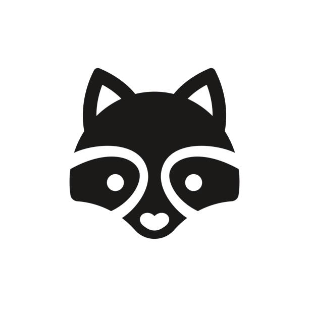 Best Raccoon Illustrations, Royalty-Free Vector Graphics ... Raccoon Face Clip Art Black And White