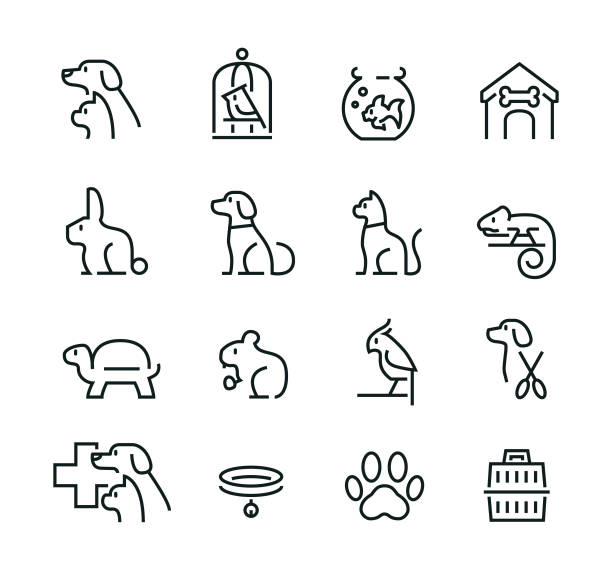minimal thin line pet icon set - cat stock illustrations, clip art, cartoons, & icons