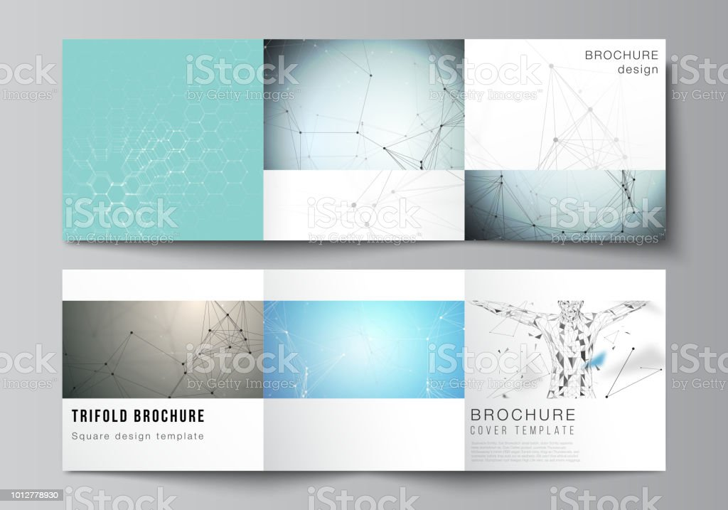 minimal vector layout modern covers design templates for trifold