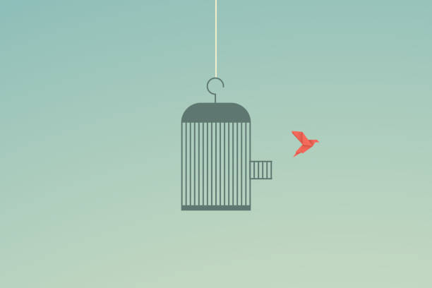 Minimalist stile. vector business finance. Flying bird and cage Freedom concept. Emotion of freedom and happiness Minimalist stile. vector business finance. Flying bird and cage Freedom concept. Emotion of freedom and happiness escaping stock illustrations