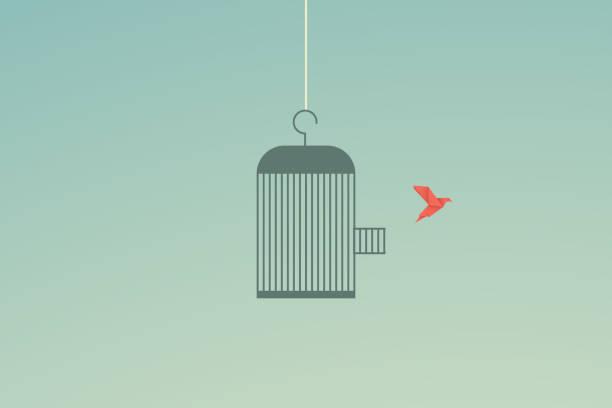 stockillustraties, clipart, cartoons en iconen met minimalistische stijl. vector business finance. flying bird en cage freedom concept. emotie van vrijheid en geluk - kooi