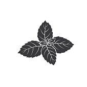 istock Mint glyph icon 1256364616