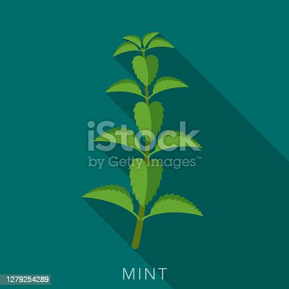 istock Mint Herb and Spice Icon 1279254289