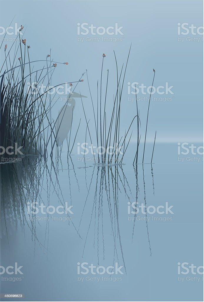 Mist on Lake-1 vector art illustration