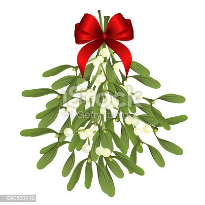 istock Mistletoe sprigs with red bow, vector illustration for Christmas design. 1060533110