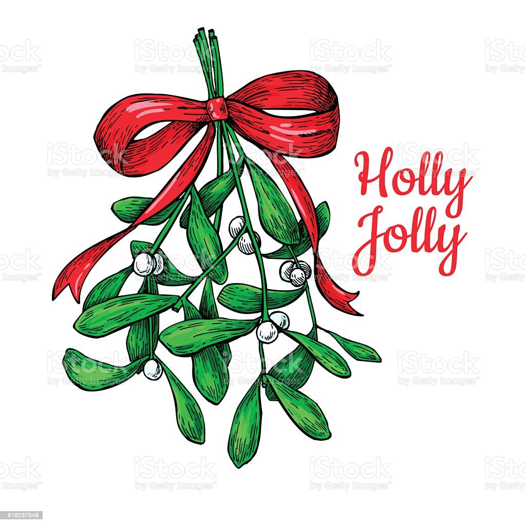 Mistletoe with bow and ribbon. Christmas card with decor plant. vector art illustration