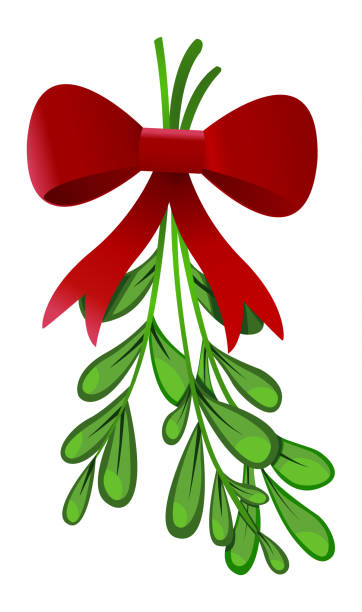 Best Mistletoe Illustrations, Royalty-Free Vector Graphics ...