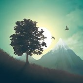 Foggy morning landscape with tree and flying birds in the mountains. Vector illustration.