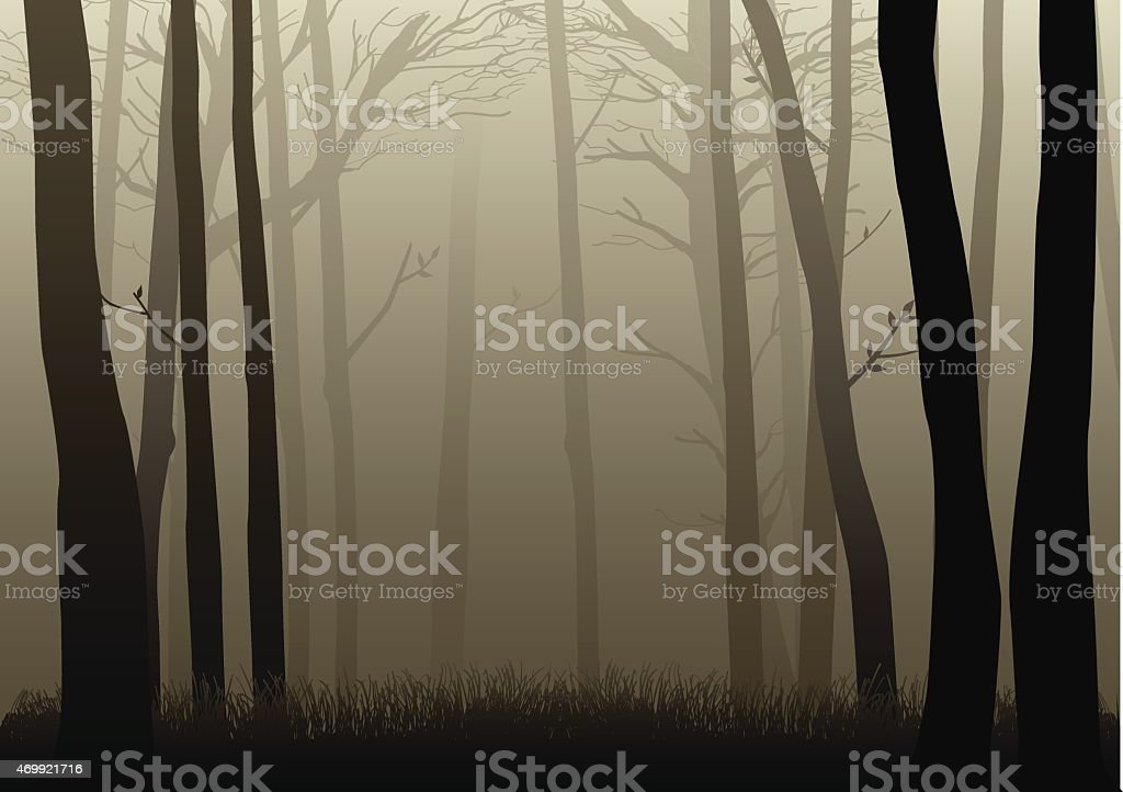 Misty Woods vector art illustration