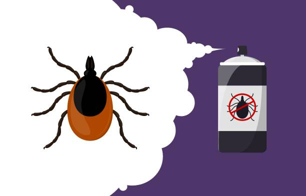 Mite parasites repellent banner concept. Insect repellent aerosol. Pest, insect and bug control spray bottle. Cartoon illustration Mite parasites repellent banner concept. Insect repellent aerosol. Pest, insect and bug control spray bottle. Vector cartoon illustration arachnid stock illustrations