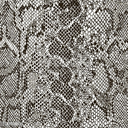 Mix animal skin. Prints Snake. Safari africa seamless pattern, vector design for fashion, fabric and all prints on white background