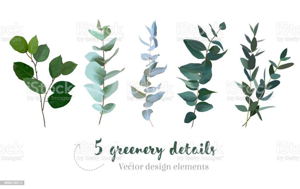 Mélange d'herbes et plantes vecteur grande collection mélange dherbes et plantes vecteur grande collection vecteurs libres de droits et plus d'images vectorielles de a la mode libre de droits