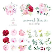 Mix of seasonal flowers and plants big vector collection