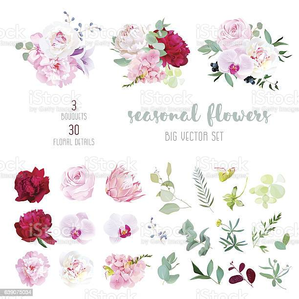 Mix of seasonal flowers and plants big vector collection vector id639075034?b=1&k=6&m=639075034&s=612x612&h=darohunq2cpdtcrid7sx6mfr2l8mf5wzgi5s2apvdqc=
