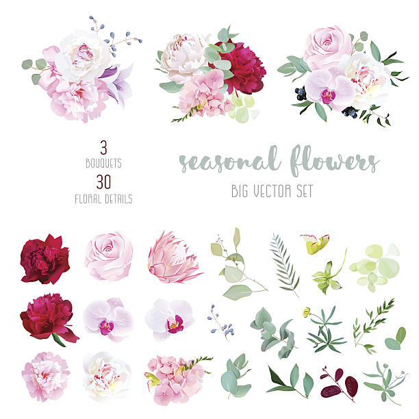 Mix of seasonal flowers and plants big vector collection​​vectorkunst illustratie