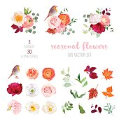Peachy rose, white and burgundy red peony, orange ranunculus, carnation, hydrangea, autumn leaves, robin bird and mix of seasonal plants big vector collection. All elements are isolated and editable.