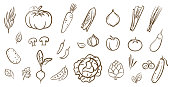 Mix vegetables collection, cute line art vector illustration in cartoon style