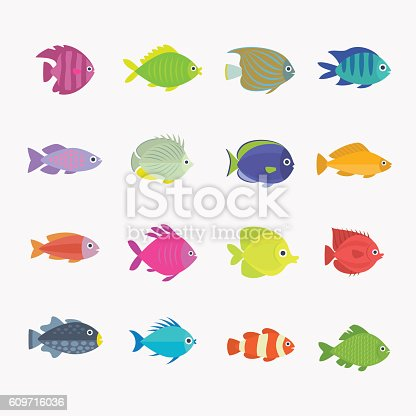 Collection of colorful, bright, different shapes cute fish.