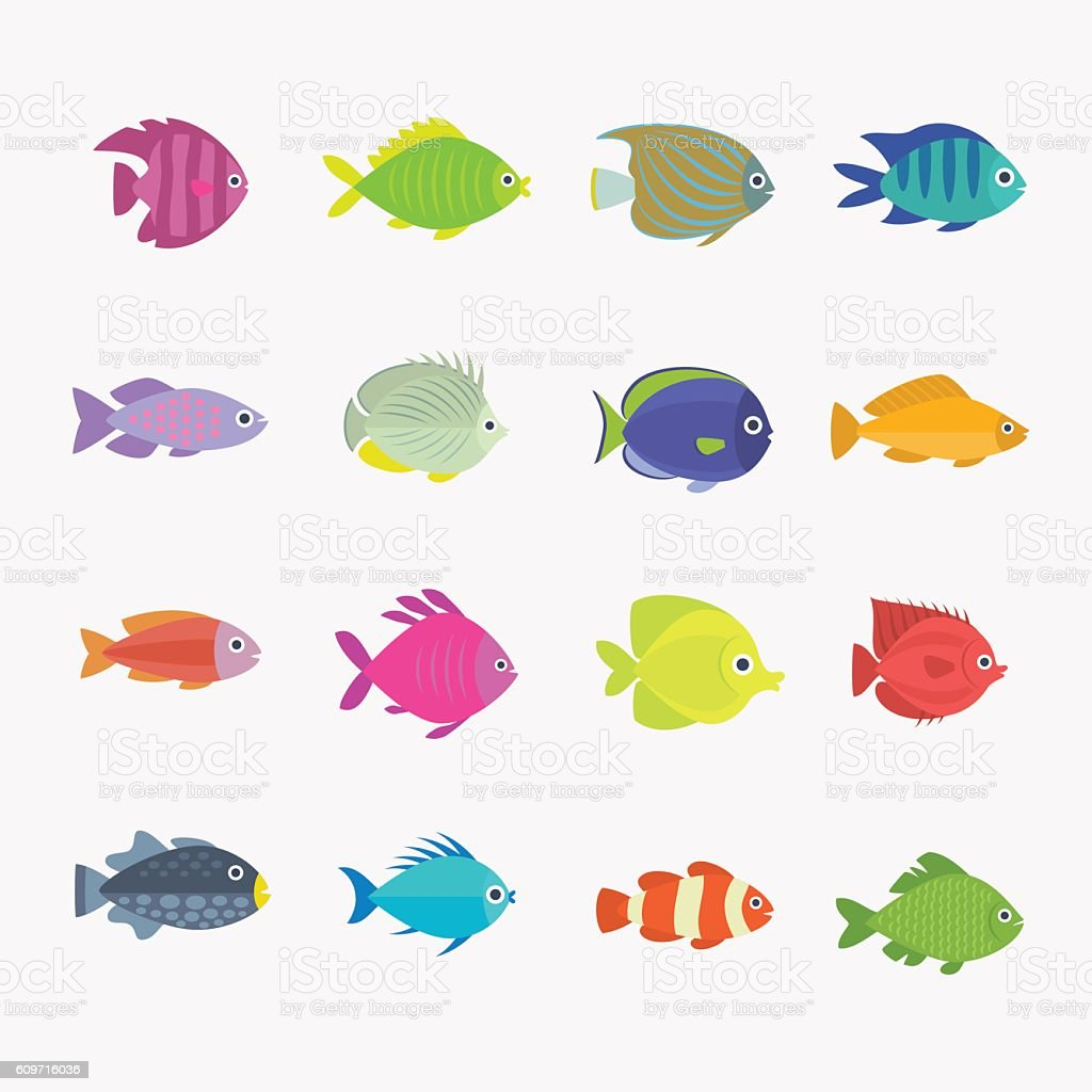 Mixed tropical fish vector art illustration