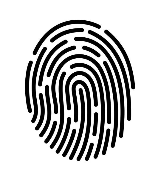 ilustraciones, imágenes clip art, dibujos animados e iconos de stock de aplicación móvil para reconocimiento de huella digital - robo de identidad