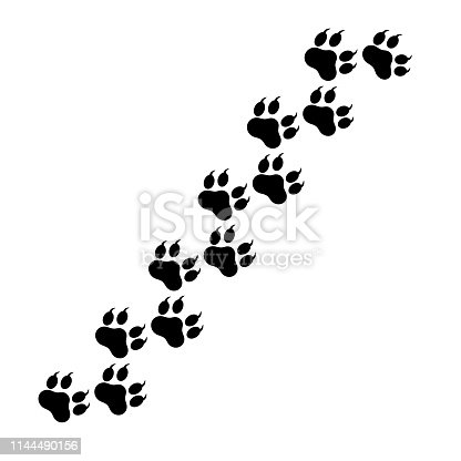 Paw of the beast, dog tracks. Traces of dog paws, a trace of a cat, the imprint of a trace of a tiger or a lion on a transparent background. Vector illustration eps 10.