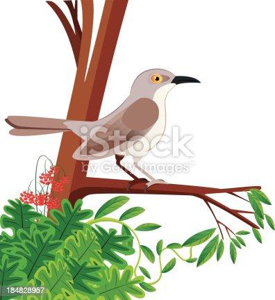 Mockingbird Stock Vector Art More Images Of Animal 184828957