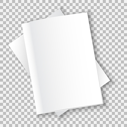 mockup books vector