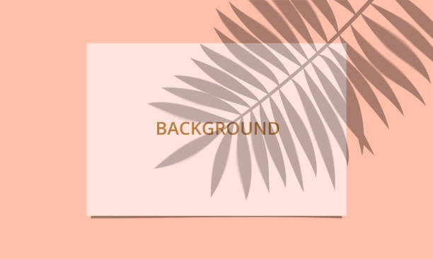 Mockup with Palm leaf shadow overlay Mockup with Palm leaf shadow overlay. White paper sheet on peach color background with natural light effect. Realistic vector illustration. focus on shadow stock illustrations