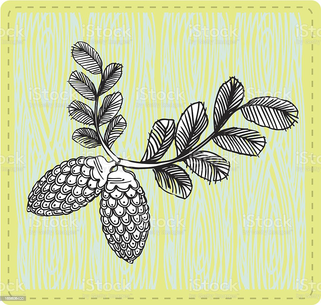 mod doodled pine cone royalty-free mod doodled pine cone stock vector art & more images of 1960-1969