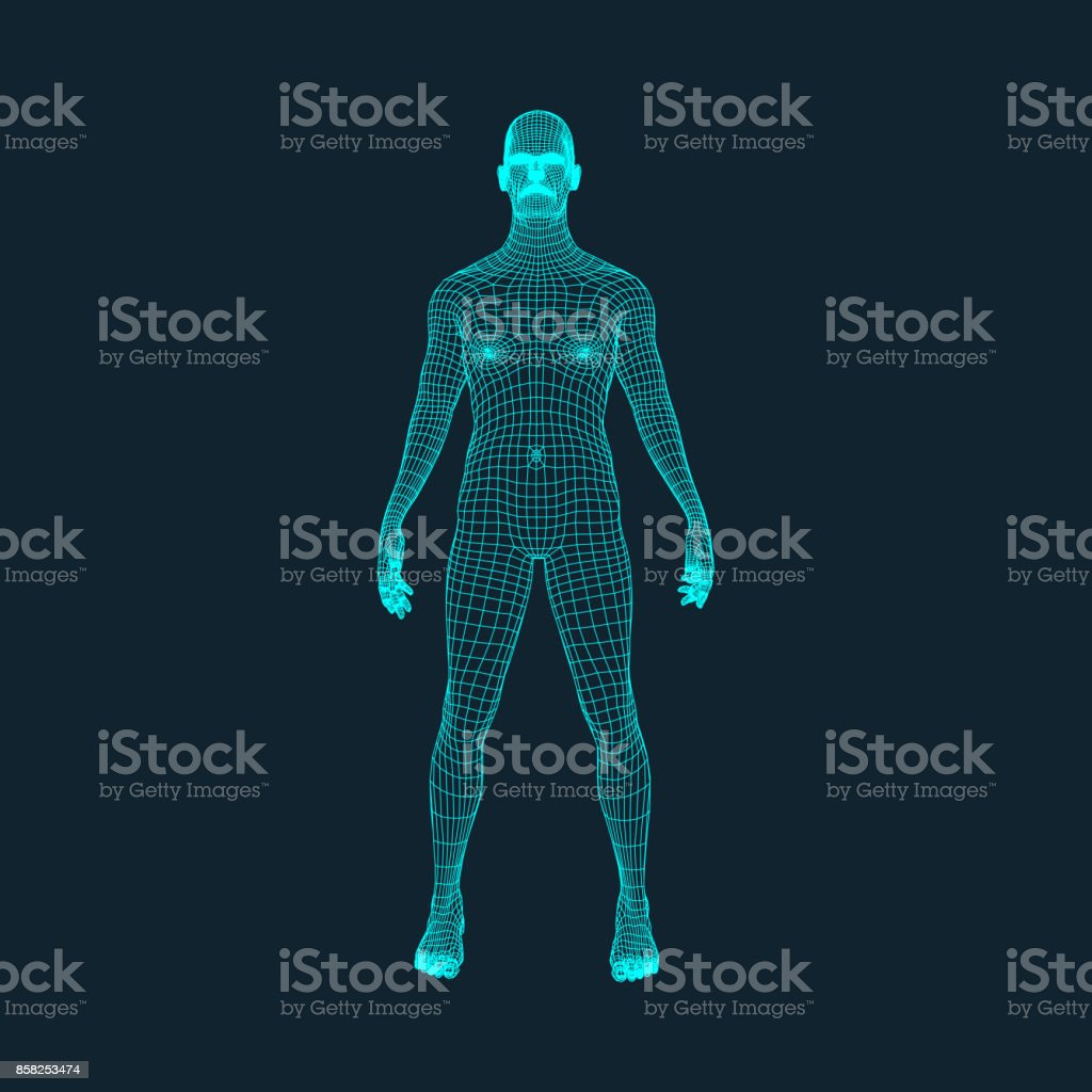 3D Model of Man. Polygonal Design. Geometric Design. Business, Science and Technology Vector Illustration. 3d Polygonal Covering Skin. Human Polygon Body. Human Body Wire Model. vector art illustration