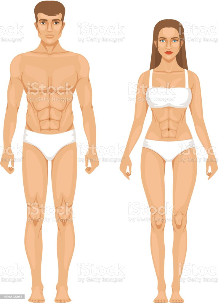 Model of sporty man and woman standing front view. Different body parts. Vector illustration vector art illustration