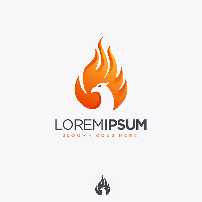 Modern abstract Fire phoenix icon vector template on white background
