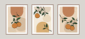 Modern abstract line arts background with oranges and different shapes for wall decoration, postcard or brochure cover design. Vector illustrations design.