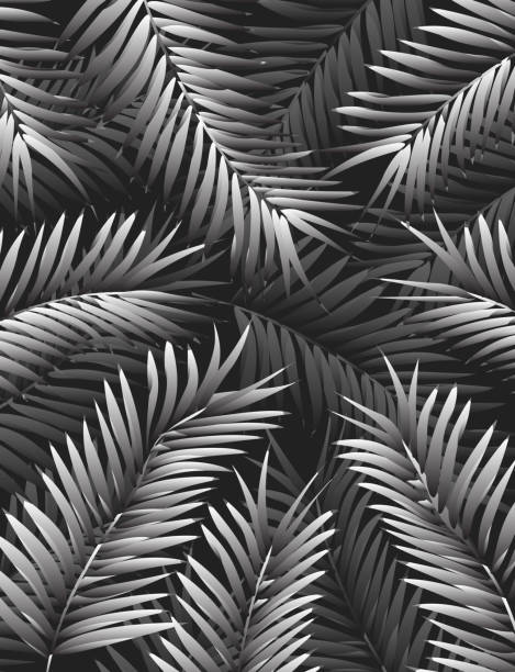Modern and Elegant Jungle Background Template with Palm Leaves in Forest vector art illustration