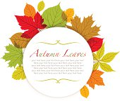 Modern autumn leaves frame with copy space.  EPS10 file contains transparencies.  Global colors used, hi res jpeg included. Scroll down to see more of my illustrations.
