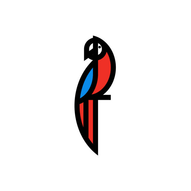 ilustrações de stock, clip art, desenhos animados e ícones de modern bold line icon or logo template of macaw parrot sitting on branch - arara