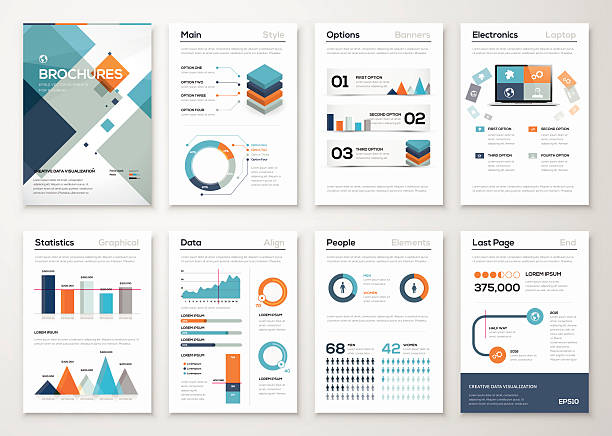 modern business brochures and infographic vector elements - demographics infographics stock illustrations, clip art, cartoons, & icons