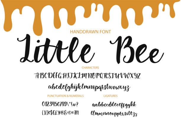 Modern calligraphic font. Brush painted letters Handrawn vector alphabet. Modern calligraphic font. Brush painted abc with ligatures. handwriting stock illustrations