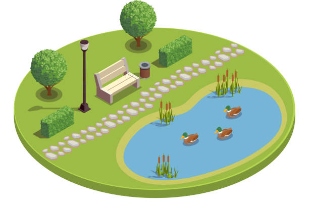 modern city and park infrastructure isometric composition City park recreational area round isometric element with bench trees bushes pond plants reeds ducklings vector illustration pond stock illustrations
