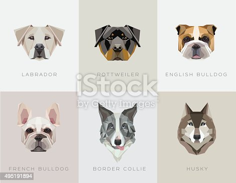 Modern contemporary geometric dog breeds vector illustrations. Labrador retriever, Rottweiler, English bulldog, French bulldog, Border Collie and Husky icons