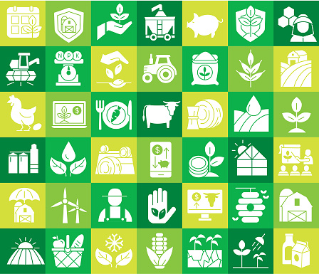 Modern Farm and Agriculture square colorful icon concepts