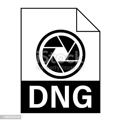 istock Modern flat design of DNG file icon for web 1330633045