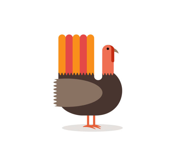 modern flat vector illustration of a turkey. - thanksgiving turkey stock illustrations
