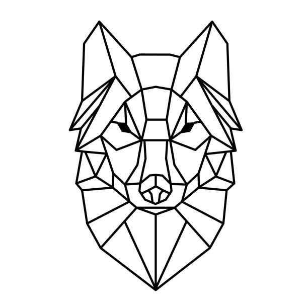 bildbanksillustrationer, clip art samt tecknat material och ikoner med moderna geometri wolf design tatuering vektorbild - varg
